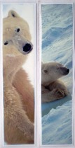 polar bear bookmarks